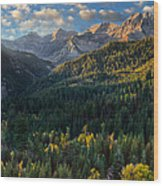 Fall Colors On Mt. Timpanogos Wood Print