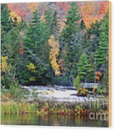 Fall Colors On The  Tahquamenon River   Wood Print