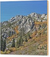 Fall Colors S Lake Tahoe California Wood Print