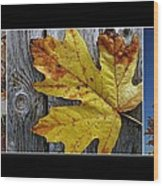 Fall Colors Triptych Wood Print