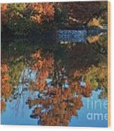 Fall Colors Water Reflection Wood Print by Robert D  Brozek