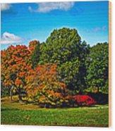 Fall Colours In Massachusetts Wood Print