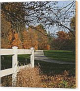 Fall Comes To The Hollow Wood Print