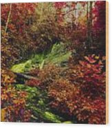 Fall Creek Fastasy Wood Print