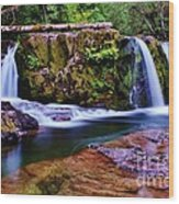 Fall Creek Oregon 3 Wood Print