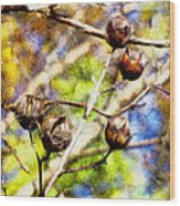 Fall Crepe Myrtle Wood Print
