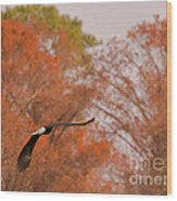 Fall Eagle Wood Print