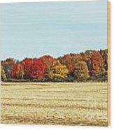 Fall Field Wood Print