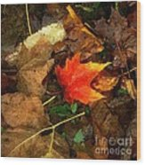 Fall Flames Out Wood Print