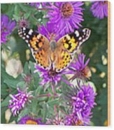 Fall Flutterby Wood Print