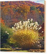 Fall Foilage In The Mountains Wood Print