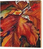 Autumn Dressage Wood Print