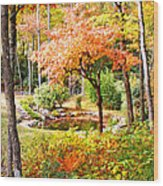 Fall Folage And Pond Wood Print