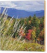 Fall Foliage 2 Wood Print