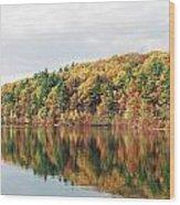 Fall Foliage At Walden Pond Wood Print by John Sarnie