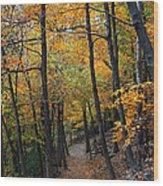 Fall Foliage Colors 03 Wood Print