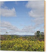 Fall Foliage Hilltop Landscape Wood Print