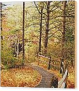 Fall Foliage In New England Wood Print