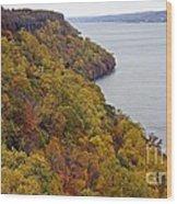 Fall Foliage On The New Jersey Palisades II Wood Print