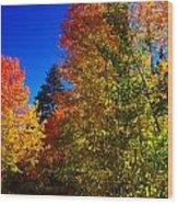 Fall Foliage Palette Wood Print