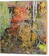 Fall Foliage Reflection 2 Wood Print