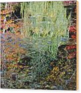 Fall Foliage Reflection 3 Wood Print