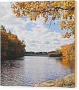 Fall Foliage V Wood Print