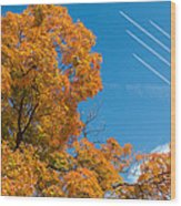 Fall Foliage With Jet Planes Wood Print