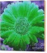 Fall For Me Purple Green Wood Print by Holley Jacobs
