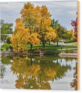 Fall Fort Collins-2 Wood Print by Baywest Imaging