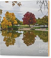 Fall Fort Collins Wood Print by Baywest Imaging