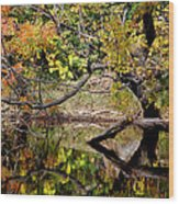 Fall From The Water Wood Print