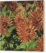 Fall Garden Flowers Wood Print