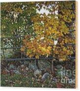 Fall Gate Wood Print