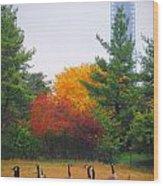 Fall Geese Of Washington Wood Print