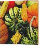 Fall Gourds Wood Print