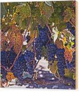 Fall Grape Harvest Wood Print