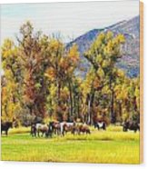 Fall Grazing Wood Print