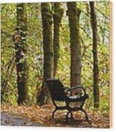 Fall Has Arrived Wood Print