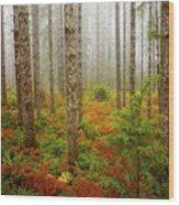 Fall Has Come Wood Print