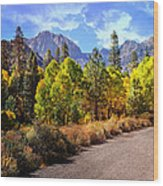 Fall Hiking In The High Sierras Wood Print
