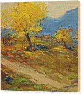 Fall In Albania Wood Print
