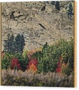 Fall In Carson Valley  Wood Print