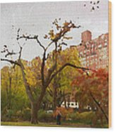 Fall In Central Park Wood Print
