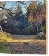 Fall In Cherry Creek Wood Print