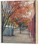 Fall In Downtown Vancouver Washington Wood Print