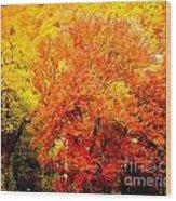 Fall In Full Bloom Wood Print