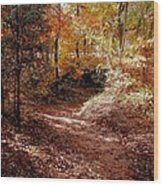 Fall In Johnston County Wood Print