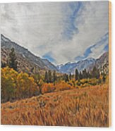 Fall In Lundy Canyon Wood Print