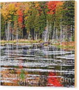 Fall In Maine Wood Print by Arie Arik Chen
